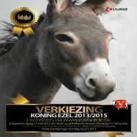 Flyer van Koning Ezel