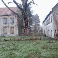Het landgoed Hobos te Overpelt